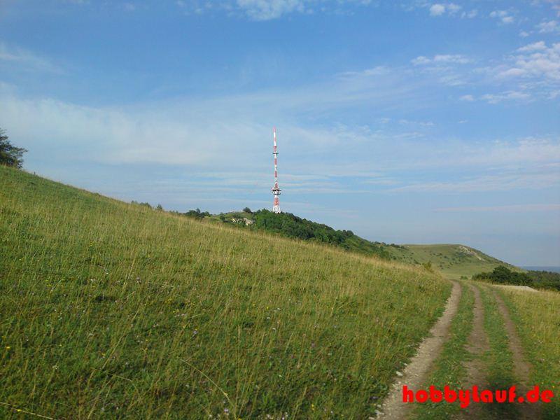 Hesselberg_Berglauf_14_DSC01276