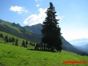 Wanderung_Zugspitze_IMG_5550