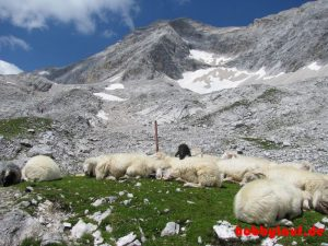Wanderung_Zugspitze_IMG_5596