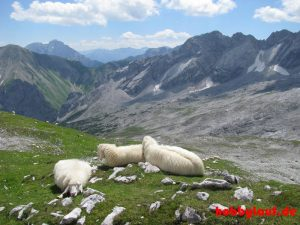 Wanderung_Zugspitze_IMG_5600