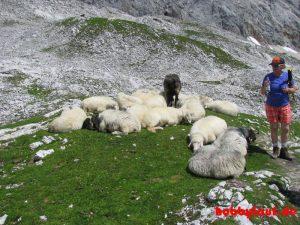 Wanderung_Zugspitze_IMG_5601