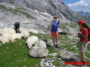 Wanderung_Zugspitze_IMG_5602